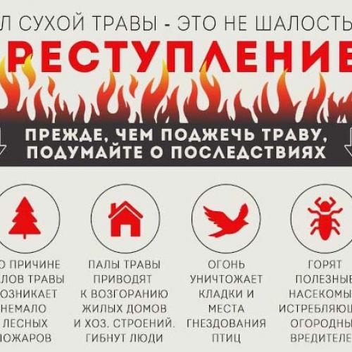 В Одинцовском округе ввели особый противопожарный режим